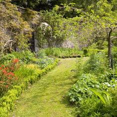 Local Gardens