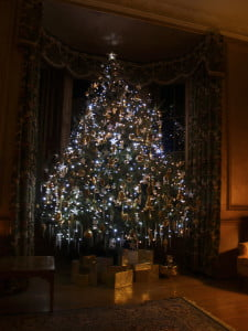 Xmas tree in the drawing room at Ardanaiseig